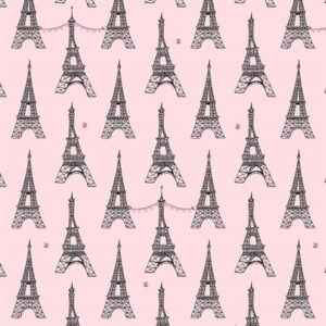 Paris Valentine By Michael Miller - Blossom