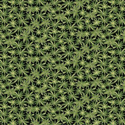 A Wildflower Meadow By Jackie Robinson For Benartex - Black/Green