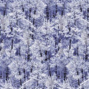 Pearl Frost By Kanvas Studio For Benartex - Royal