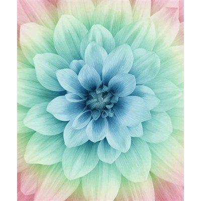 Dream Big Digital Print By Hoffman - Blossom