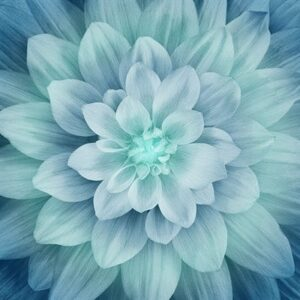 Dream Big Digital Print By Hoffman - Turquoise