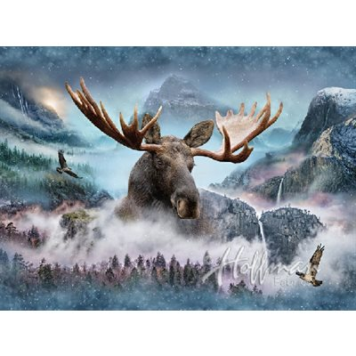 Call Of The Wild - Moose Digital Print By Hoffman - Waterfall