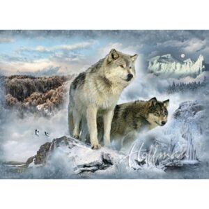 Call Of The Wild - Wolf Digital Print By Hoffman - Glacier