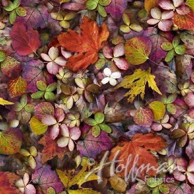 Leaf Me Be Digital Print By Hoffman - September
