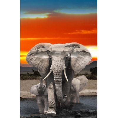 Wild Kingdom Digital Print By Hoffman - Elephant