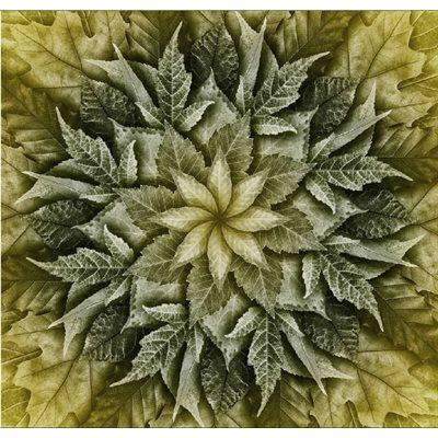 Dream Big Leaf Digital Print By Hoffman - Olivia
