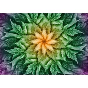 Dream Big Leaf Digital Print By Hoffman - Dragonfly