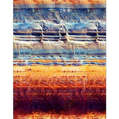 Natures Narratives By Hoffman - Desert