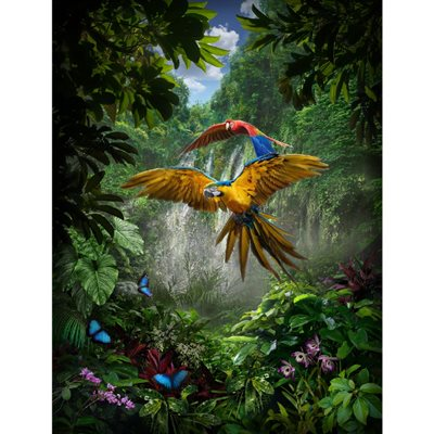 Call Of The Wild Digital Print By Hoffman - Amazon