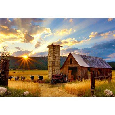 Sun Up To Sun Down Digital Print By Hoffman - Barn Red