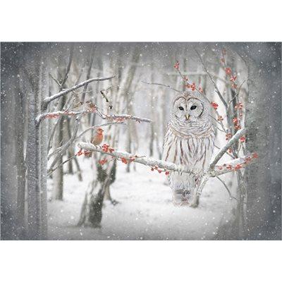 Call Of The Wild Digital Print By Hoffman - Birch