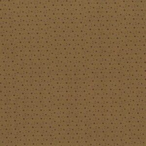 Spiced Pumpkin By Lynette Anderson For Rjr Fabrics