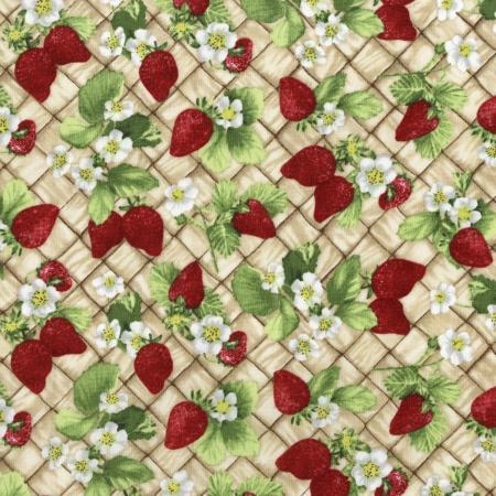Ambrosia Farm By Rjr Studio For Rjr Fabrics