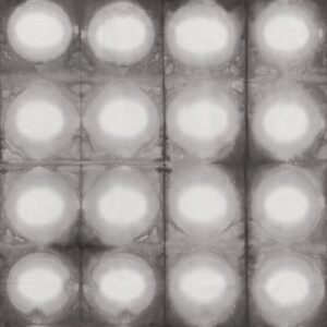 Pollinator By Leslie Tucker Jenison For Rjr Fabrics - Foglight