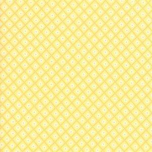 Sunday Picnic By Stacy Iest Hsu For Moda - Yellow