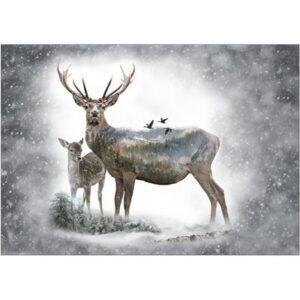 Call Of The Wild Digital Print By Hoffman - Deer - Dawn