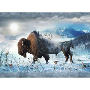 Call Of The Wild - Bison Digital Print By Hoffman - Bison