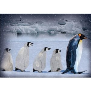 Call Of The Wild Digital Print By Hoffman - Penguin - Arctic Blue