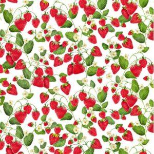 Strawberry Fields Forever By Kanvas Studio For Benaretx - White