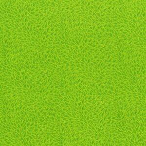 Hopscotch By Jamie Fingal For Rjr Fabrics - Lime