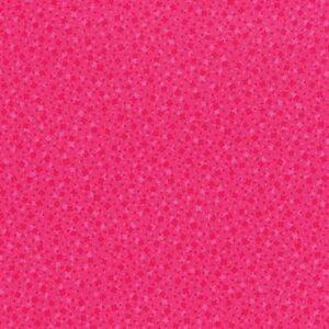 Hopscotch By Jamie Fingal For Rjr Fabrics - Hot Pink