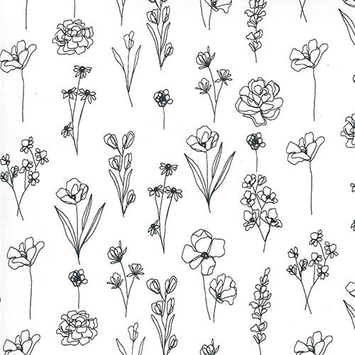 Illustrations By Alli K Designs For Moda - Paper